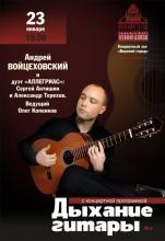 Концерт Андрея Войцеховского гитара, Минск